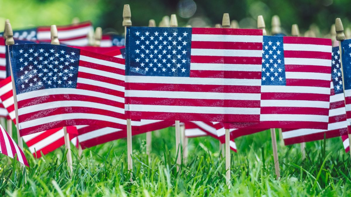 American flags on green grass